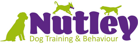 Professional dog training | Nutley Dog Training & Behaviour